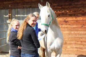 Start der 8. Staffel, Ausbildung Equipathie – Osteopathie, Physiotherapie und Psychomotorik für Pferde in Bayern am College Caball, Block 1