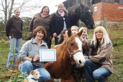Berufsausbildung am Pferd, Abschlussfoto der STaffel Osteopathie für Pferde, Ausbildung Osteopathie am Pferd