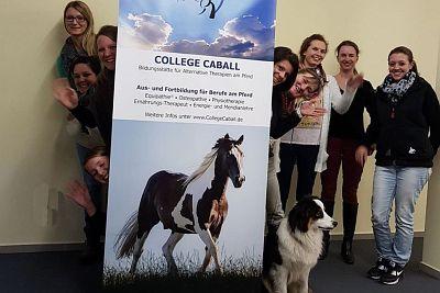 Die Berufsausbildung am Pferd am College Caball bietet die Möglichkeit, einen Pferdeberu zu erlernen