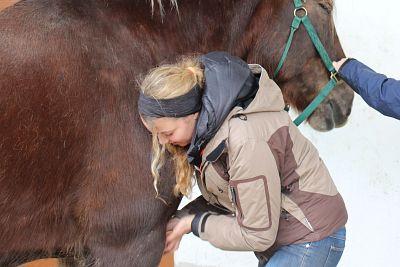 Kursbeschreibung Equipathie: Ausbildung Osteopathie, Physiotherapie, Psychomotorik am Pferd